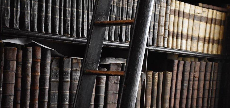 libros de Camino Conciencia